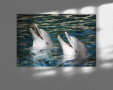 Delphine von Heike Hultsch