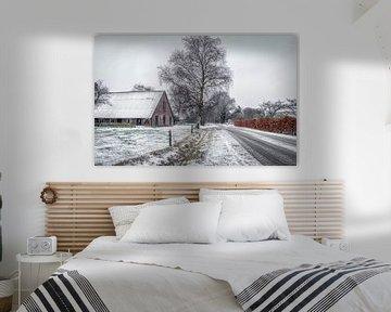 Winter en sneeuw  in Apeldoorn