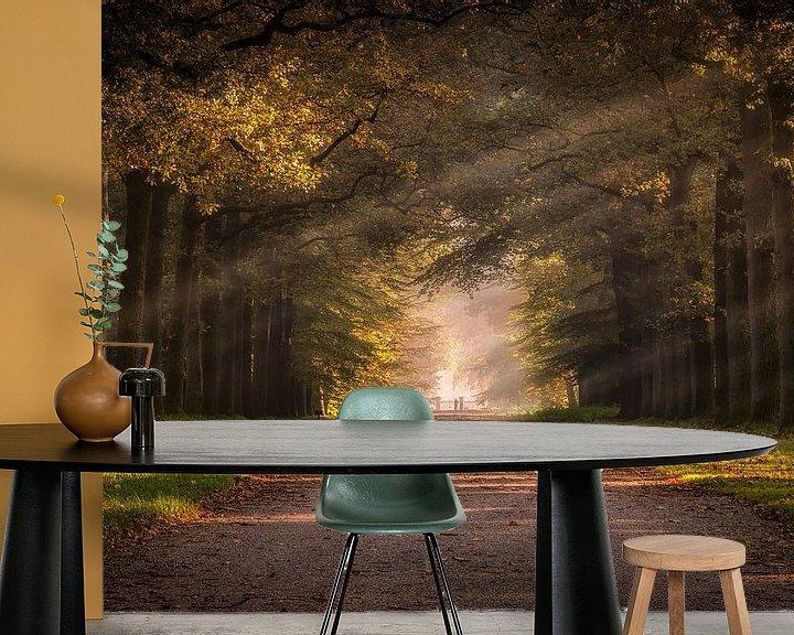 Sfeerimpressie behang: Herfst in de paleistuin van Patrick Rodink