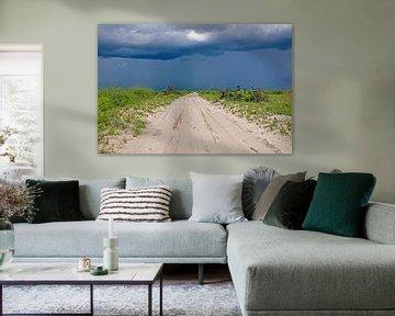 Straße im Gewitter durch Botswana van Britta Kärcher