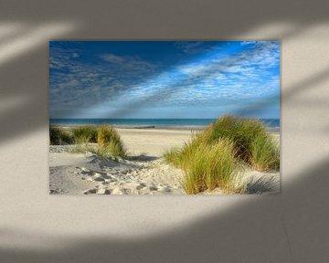 Duinenaan de Noordzeekust van Joachim G. Pinkawa