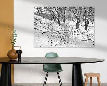 Winterlandschap van Dalex Photography