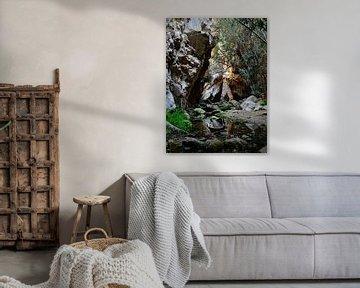 Avakas Gorge in Cyprus van Desiree Francke