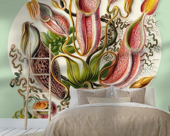 Beispiel fototapete: The Carnivorous Plants von Marja van den Hurk