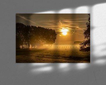 Zonsopkomst over mistige Vlaamse velden van Mike Maes