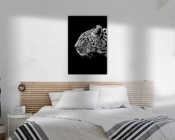 Luipaard von Angela R.