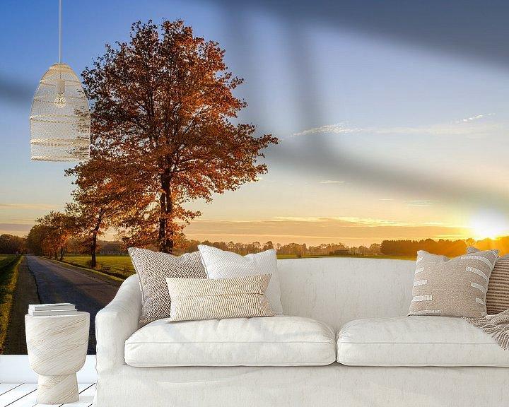 Beispiel fototapete: Baum bei Sonnenuntergang von Johan Vanbockryck