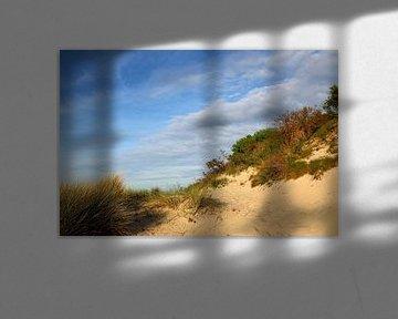 Ostseestrand von Ostsee Bilder
