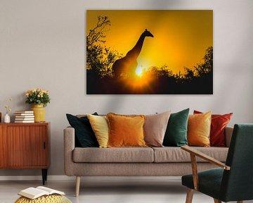 Silhouet van giraf bij zonsondergang van Davy Vernaillen