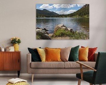 Lake view van Wilco Speksnijder