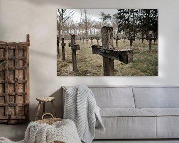 Cemetery of the Insane van Evelien Geerinckx