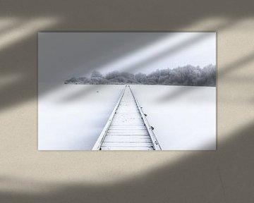 Winter wonderland van Jo Pixel