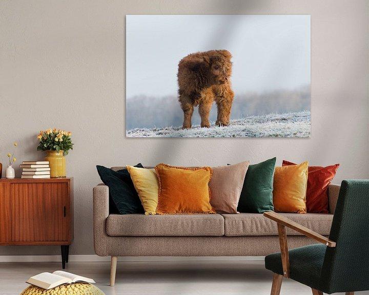 Sfeerimpressie: Kalf in wintersetting van Remco Van Daalen