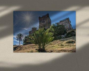 Het kasteel Almodovar del Rio in de buurt van Cordoba, Spanje von Harrie Muis