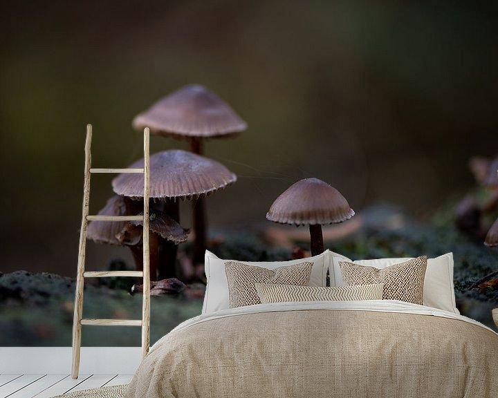 Sfeerimpressie behang: Paddenstoelen familie van Ingrid Aanen