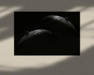 Macrofotografie Fruitschaal: appels (borsten met druppels water) van Cor Heijnen