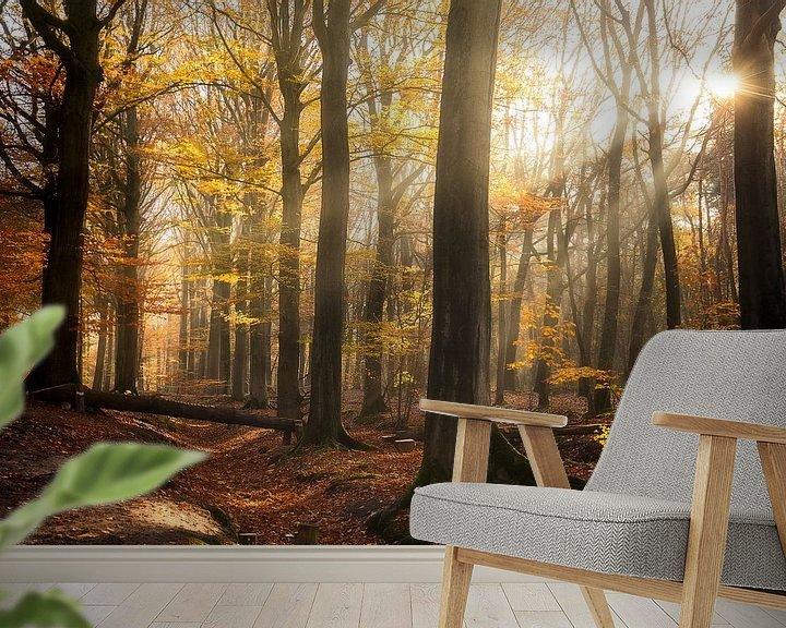 Sfeerimpressie behang: Belgie - Knesselare - Drongengoedbos van Fotografie Krist / Top Foto Vlaanderen