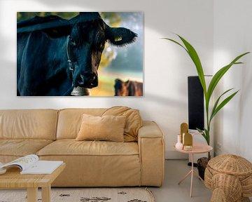 Schwarze Kuh von Stefan Heesch