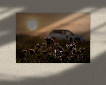 Auto im Sonnenaufgang von Stefan Heesch