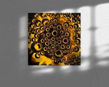 Sonnenblume durch Tropfen (Quadrat) von Marjolijn van den Berg
