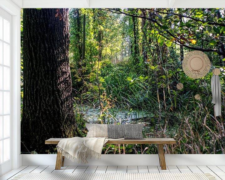 Beispiel fototapete: Märchenwald, Wald von BDG pics