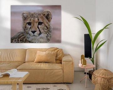 Cheetah close-up. von Marion van Kints