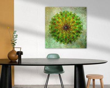 Mandala - Grunge in gelb und grün von Rietje Bulthuis