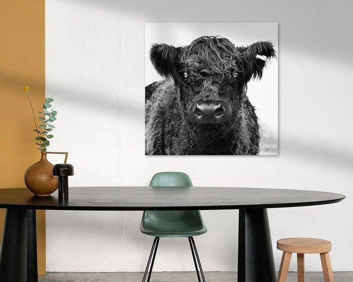 Sfeerimpressie: Koe in het veld. van Vincent van Wijk