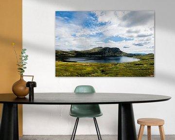 Norway, Aurlandsfjellet - Norwegain Nature