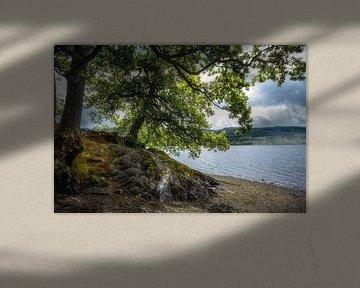 Loch Venachar, Schotland
