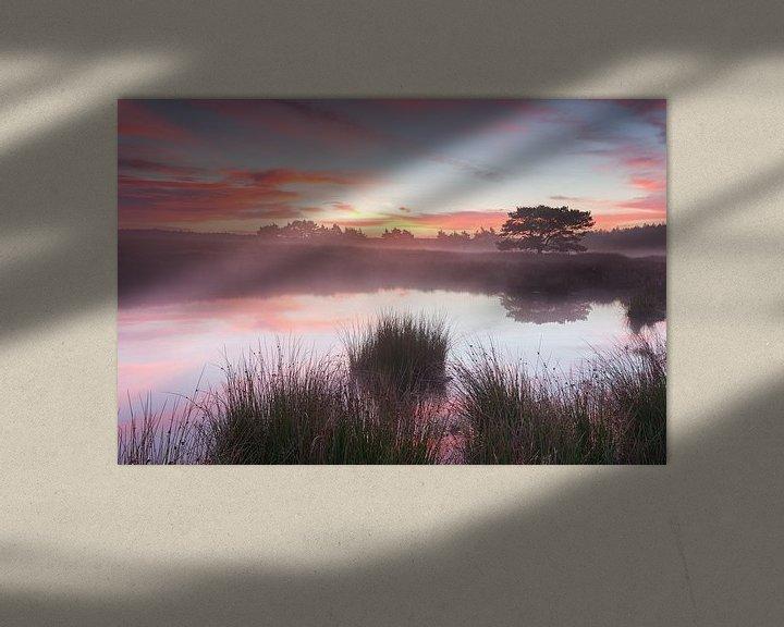 Sfeerimpressie: Perfect Morning van Rob Christiaans