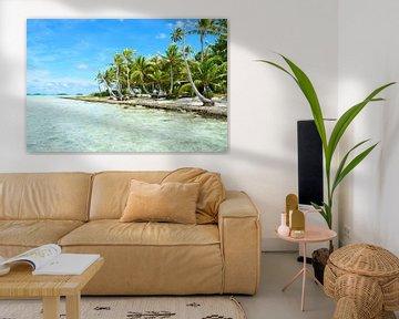 Tropisch palmstrand van Rangiroa van iPics Photography