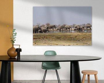 Olifantenbad von Erna Haarsma-Hoogterp