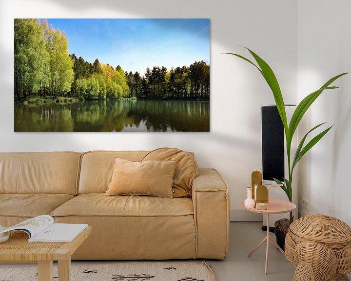 Impression: natuur reflectie sur Jan  Sterken