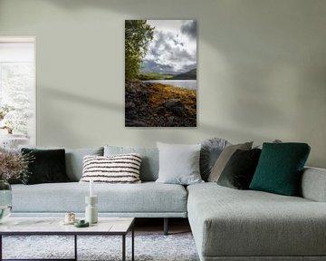 Loch Sunart / Shuaineart, Schotland