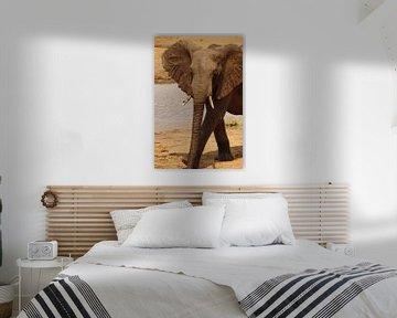 Passerende olifant von Erna Haarsma-Hoogterp