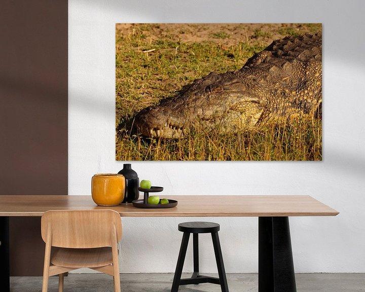 Sfeerimpressie: Krokodil in de zon van Erna Haarsma-Hoogterp