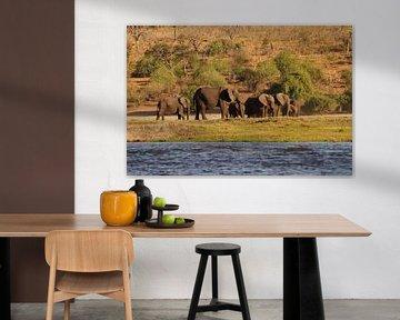 Olifanten bij de rivier van Erna Haarsma-Hoogterp