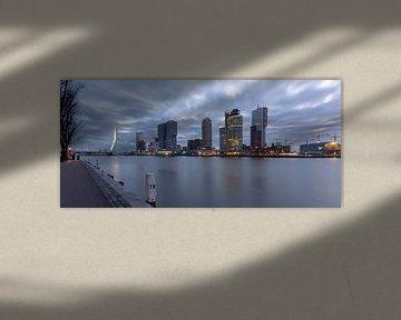 Skyline Rotterdam van Danny van Vessem
