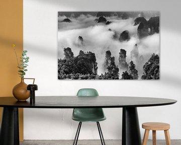 Landschaft mit Sandsteinsäulen in China in Schwarz und Weiß von Chris Stenger