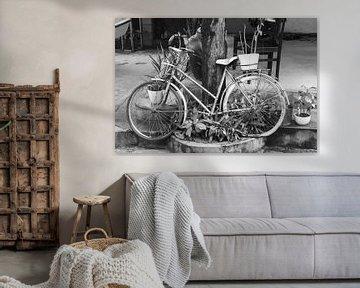 Verlaten fiets