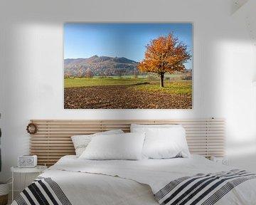 Herbstbaum sur Britta Kärcher