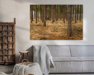 De bomen of het Bos van Johan Vanbockryck
