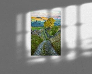Rausch der Farben in Yorkshire Dales von Lars van de Goor
