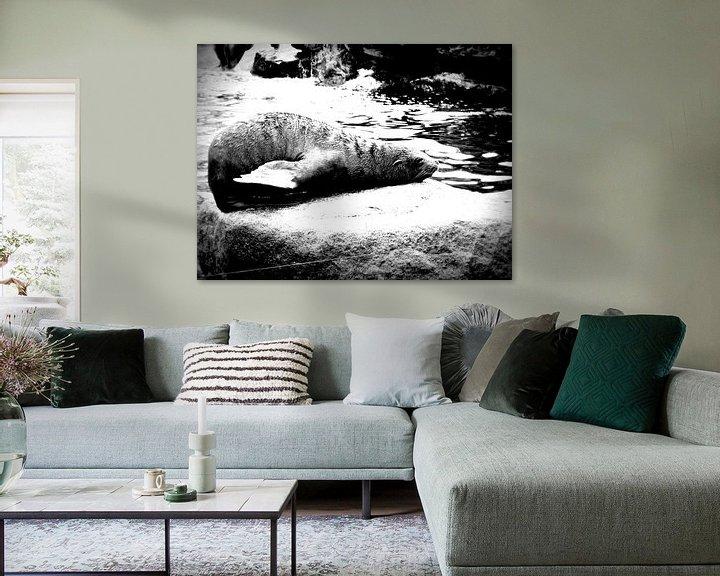 Beispiel: Relaxing Sealion von Nicky`s Prints