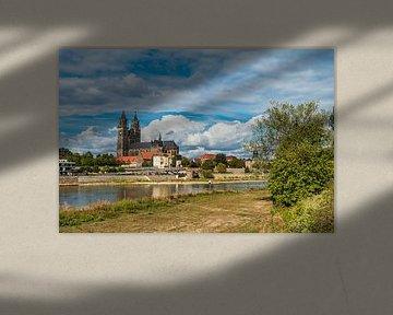 Blick über die Elbe auf den Magdeburger Dom von Rico Ködder