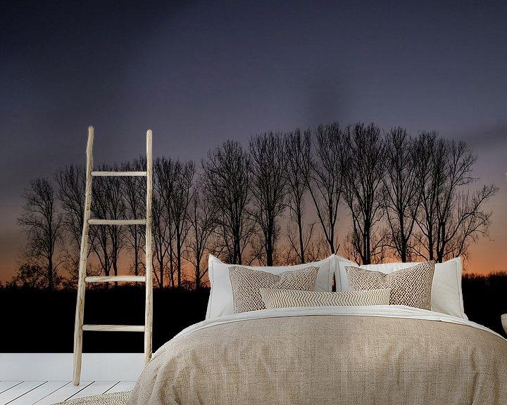 Sfeerimpressie behang: zonsondergang achter populieren van jan van de ven