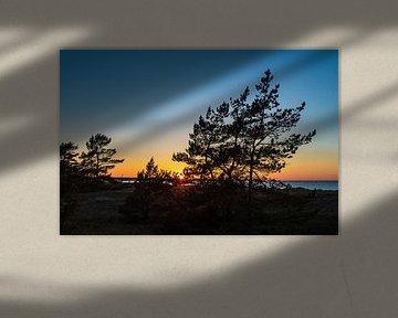 Sonnenuntergang an der Ostseeküste in Prerow von Rico Ködder
