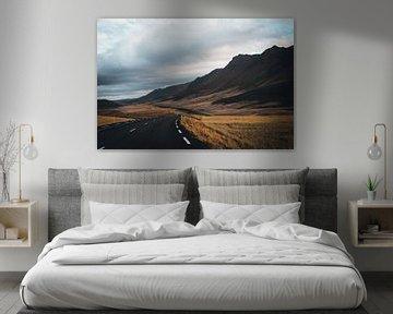 Uitgestrekte weg in Noord IJsland van Lenneke van Hassel