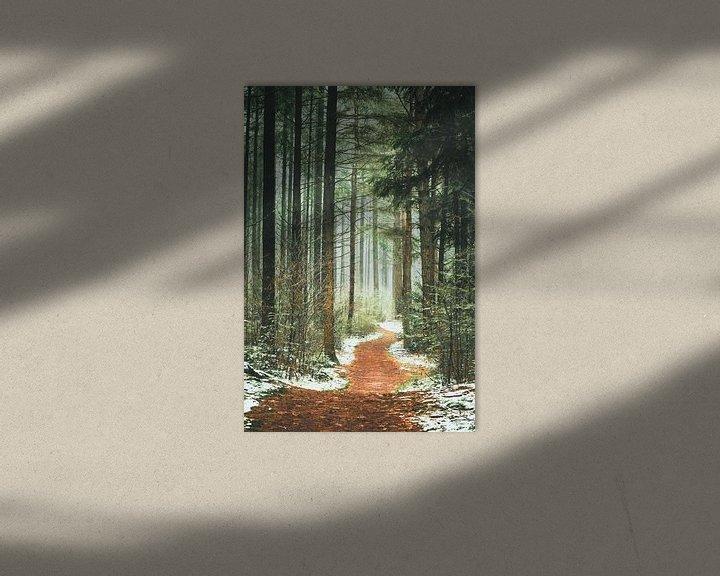 Sfeerimpressie: Het pad het bos in. van Karel Pops